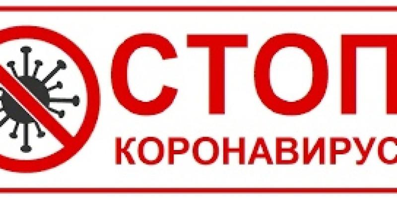 Https://profilaktika-koronavirusa.bagsurb.ru/
